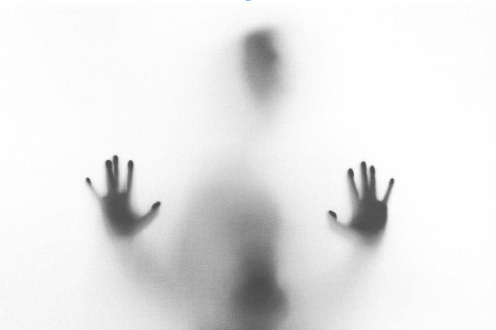 Declaração ao medo por Fernando Manfio